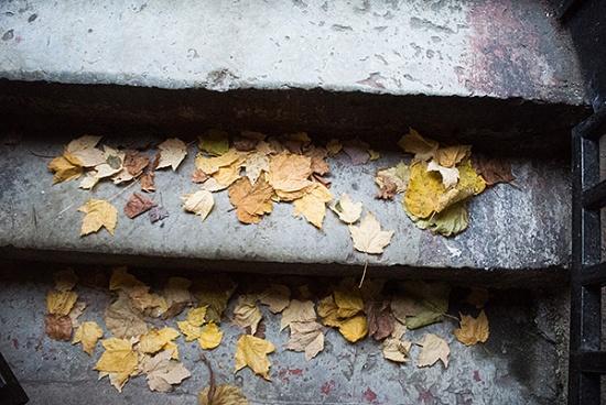 höstlöv på stentrappa
